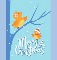 merry christmas bullfinch birds sits on branch vector image