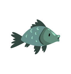 prehistoric fish biology evolution stage vector image