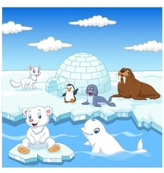 Arctics animals collection set with igloo ice hous vector image vector image