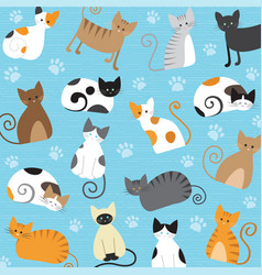 meaw pattern vector image vector image