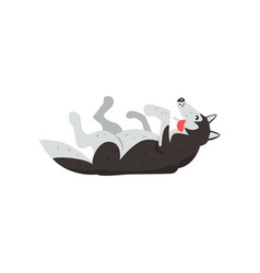 siberian husky dog character lying on the back vector image vector image