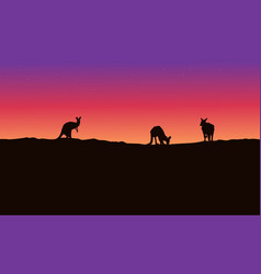 silhouette landscape kangaroo with beauty sky vector image vector image