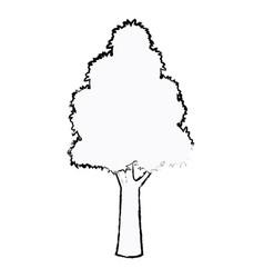 tree plant botanic foliage sketch vector image