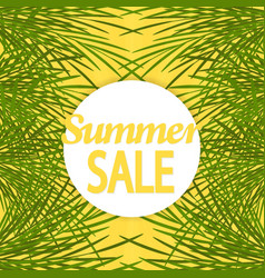 summer sale background with palm brochure vector image