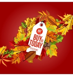 Buy only today label hot price vector