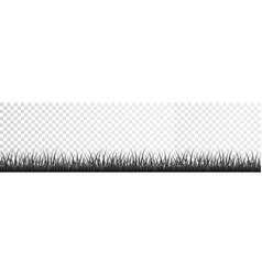 Gray grass border set on transparent background vector