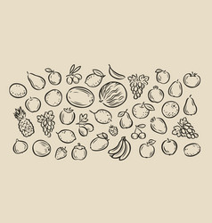 many hand-drawn fruits food sketch vector image