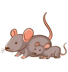 mother and baby mouse cartoon on white background vector image