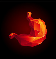 Red low poly human stomach vector