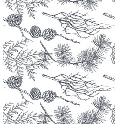 background with hand drawn conifers trees vector image
