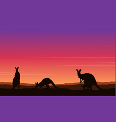 Beauty landscape kangaroo silhouette collection vector