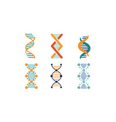 bright dna strands set spiral genetic material vector image