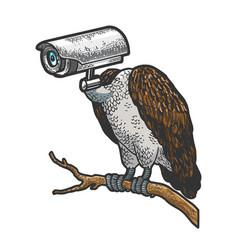 Griffin vulture surveillance camera head sketch vector