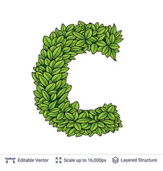 Letter c symbol of green leaves vector