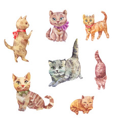 Watercolor cats cute pets vector