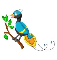 cute paradise bird cartoon vector image vector image