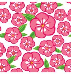 flower phlox vector image