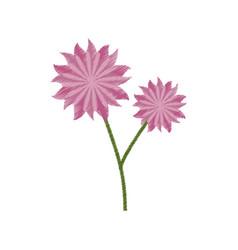 flower aster decoration image sketch vector image