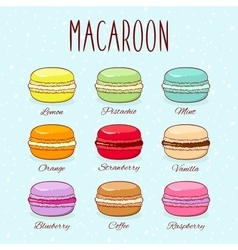 Set of different taste macaroons vector image vector image