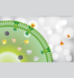 antibody blocking cell receptor on white grey vector image