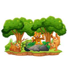 Bear on isolated jungle island vector