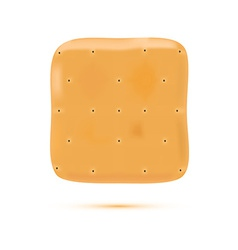 Coockie isolated on white background vector