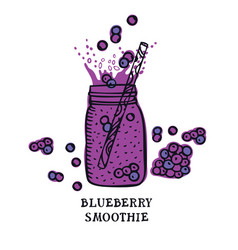 Food collection delicious blueberry smoothie vector