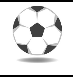 football isolate on white background vector image