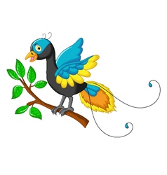 cute paradise bird cartoon vector image
