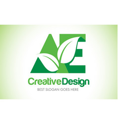 Ae green leaf letter design logo eco bio leaf vector