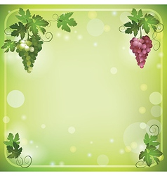 bright green background with grapes vector image