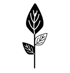 Contour ecology plants with leaves icon vector