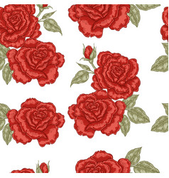 Seamless pattern with red rose flowers on white vector