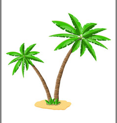 Tropical green palm jungle leaves vector