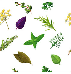 Seamless herbs pattern with seasoning and spices vector