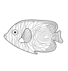 fish sketch doodle style hand drawing fish vector image