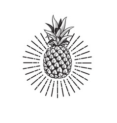 Image of pineapple fruit vector
