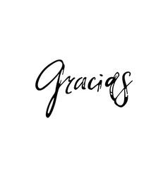 Thank you Gracias Phrase in Spanish handmade vector image vector image