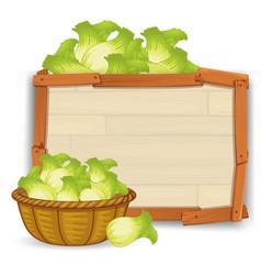 A lettuce on wooden board vector