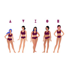 Collection female body types vector