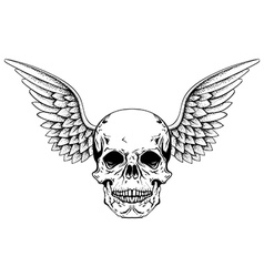 Hand drawn sketch skull with wings tattoos line vector image