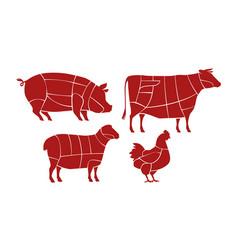Meat cutting scheme butcher shop concept farm vector