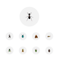Set of bug realistic symbols with beetle pismire vector