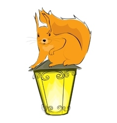 Squirrel and lantern vector
