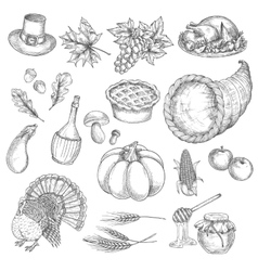 Thanksgiving sketch isolated icons vector
