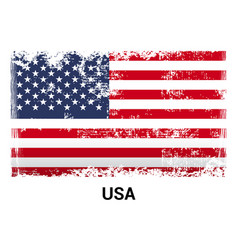 Usa flag design vector