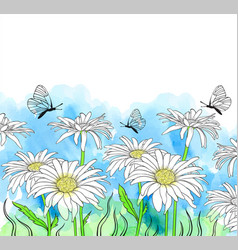 watercolor background with chamomile vector image
