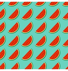 Watermelon slice cut with seed in a row summer vector