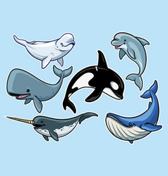 set of cheerful various of whales vector image vector image