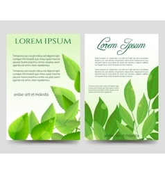 Spring flyers template with green leaves vector image